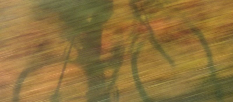 400km Brevet – Die Durchführung